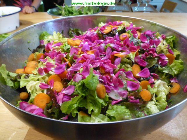 2016.6.7 Salat