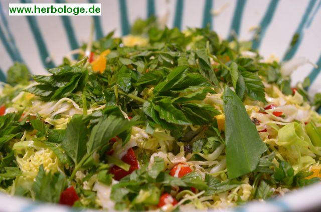 2017.4.6 Salat
