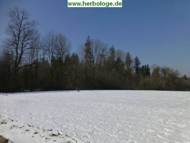 2018.3.2 winter
